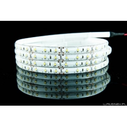 5m LED STRIP 3528 300 diod/5m  - warm white
